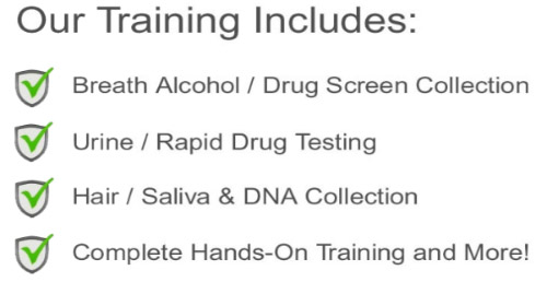 our-training-includes
